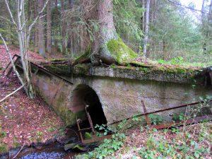 lindenhof5